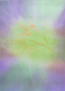 Veil Painting:Hummingbird