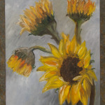 Sunflowers On Grey